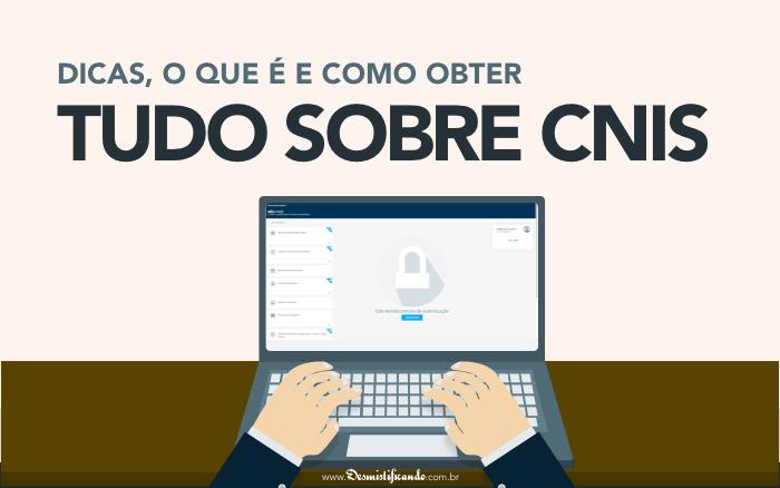 Consulta CNIS
